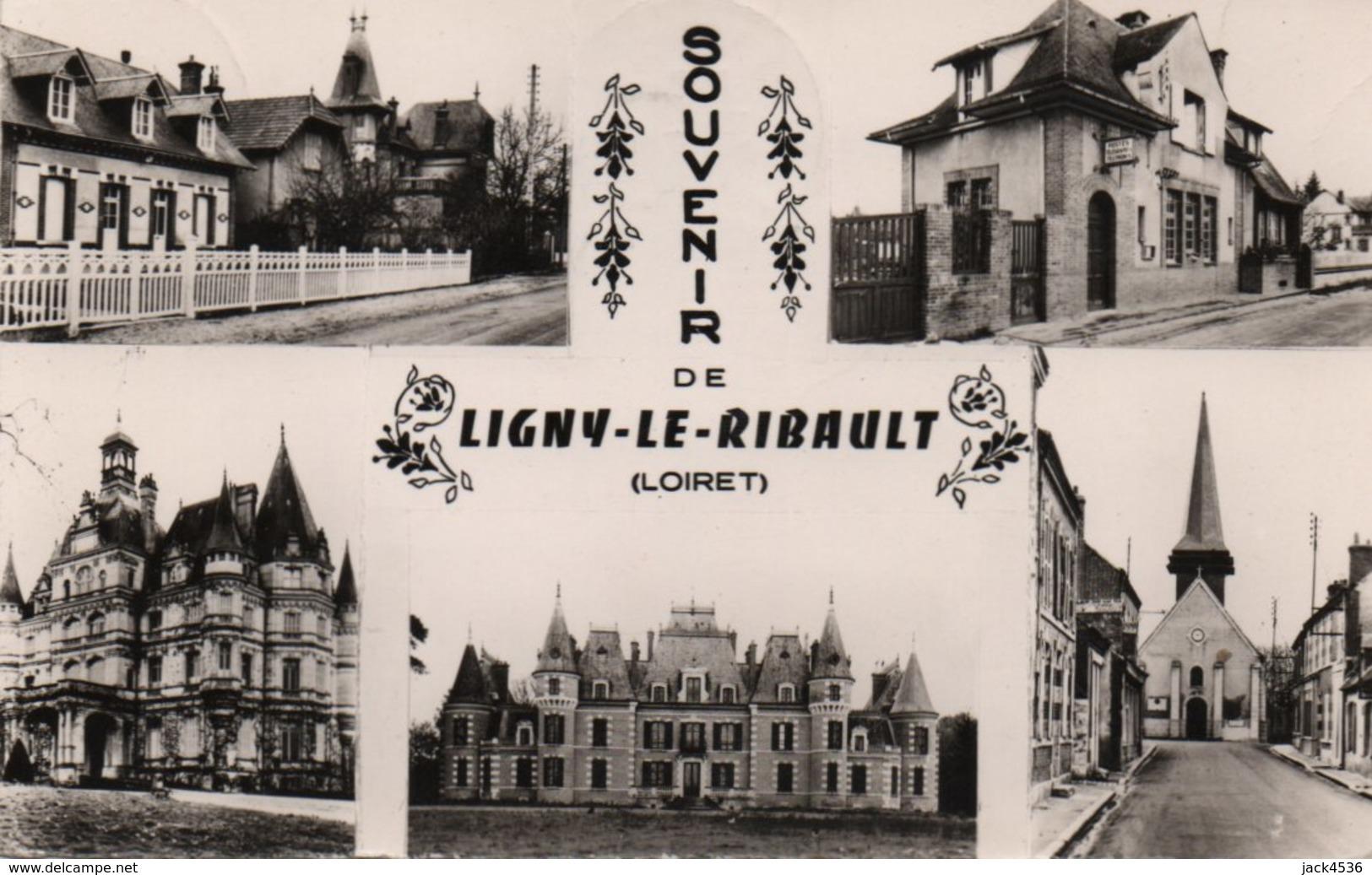 Carte Postale Semi Moderne Petit Format - Circulé - Dép. 45 - LIGNY LE RIBAULT - Multivues - France