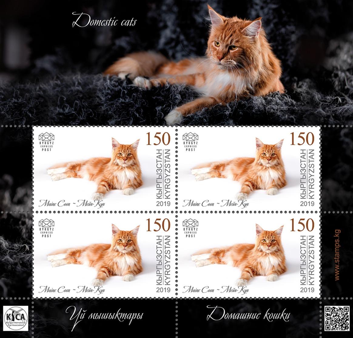 H01 Kyrgyzstan 2019 Mi# 127 Cats Katzen Mini Sheet MNH Postfrisch - Kirghizistan