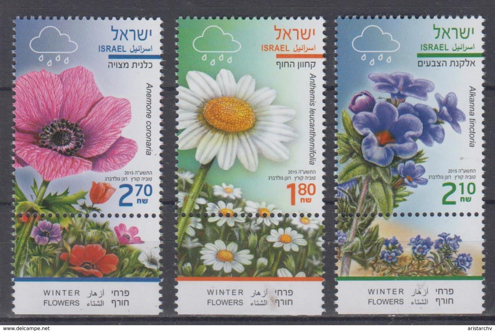 ISRAEL 2015 WINTER FLOWER ANEMONE ANTHEMIS ALKANNA - Israel
