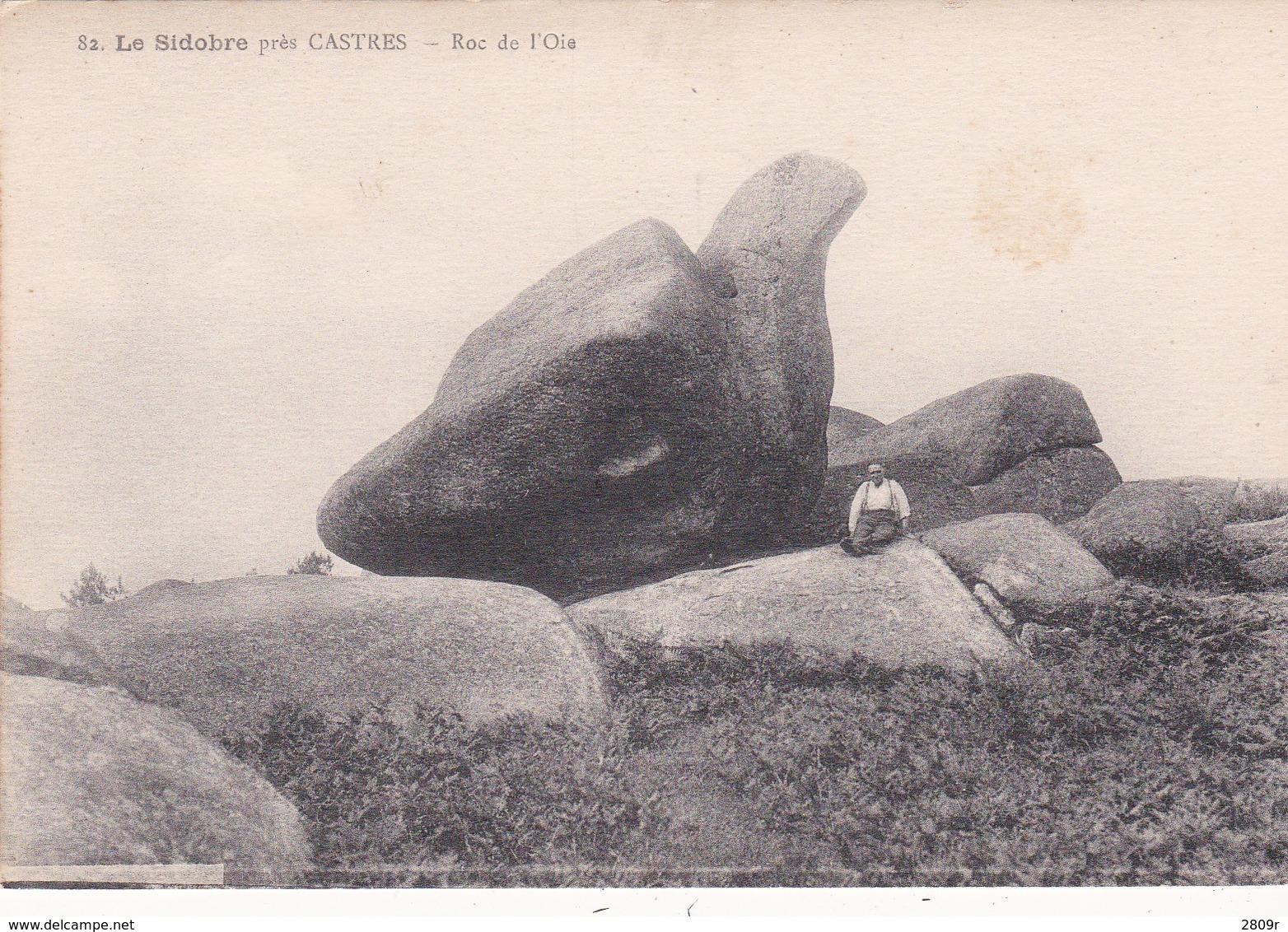 Divers Du 81 Lot De 5 Cartes - France