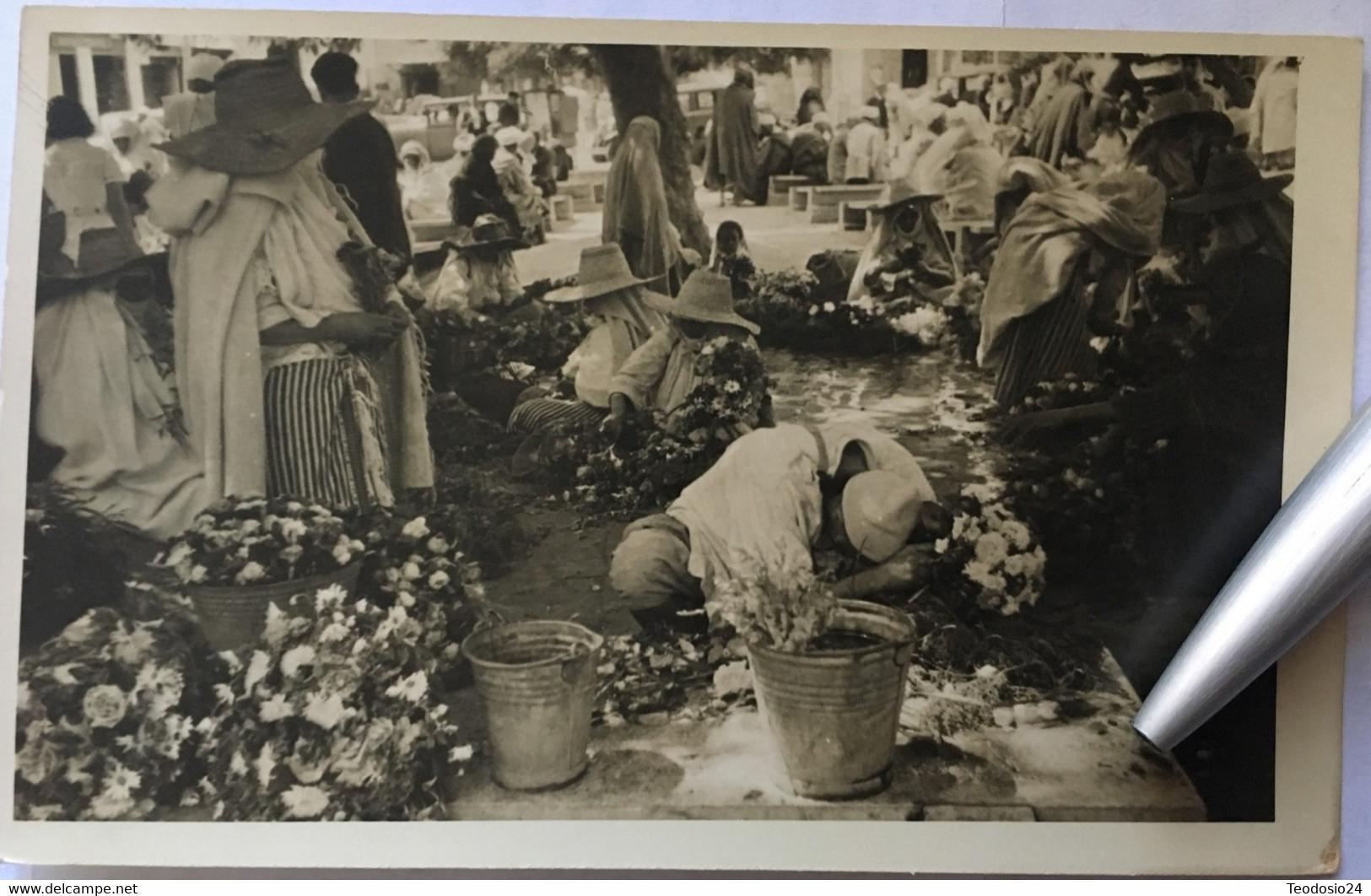 Marruecos 1948 - Marruecos