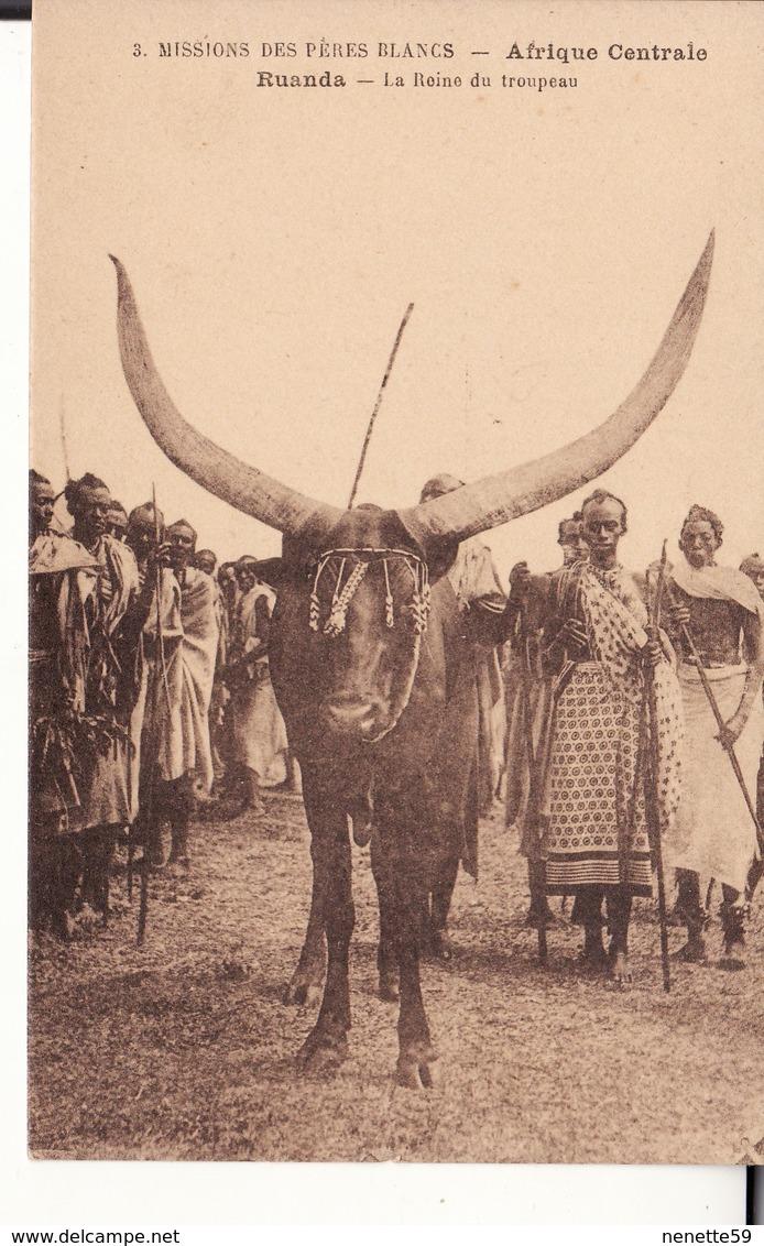 AFRIQUE CENTRALE -- RUANDA -- La Reine Du Troupeau -- Belle Animation - Ruanda-Urundi