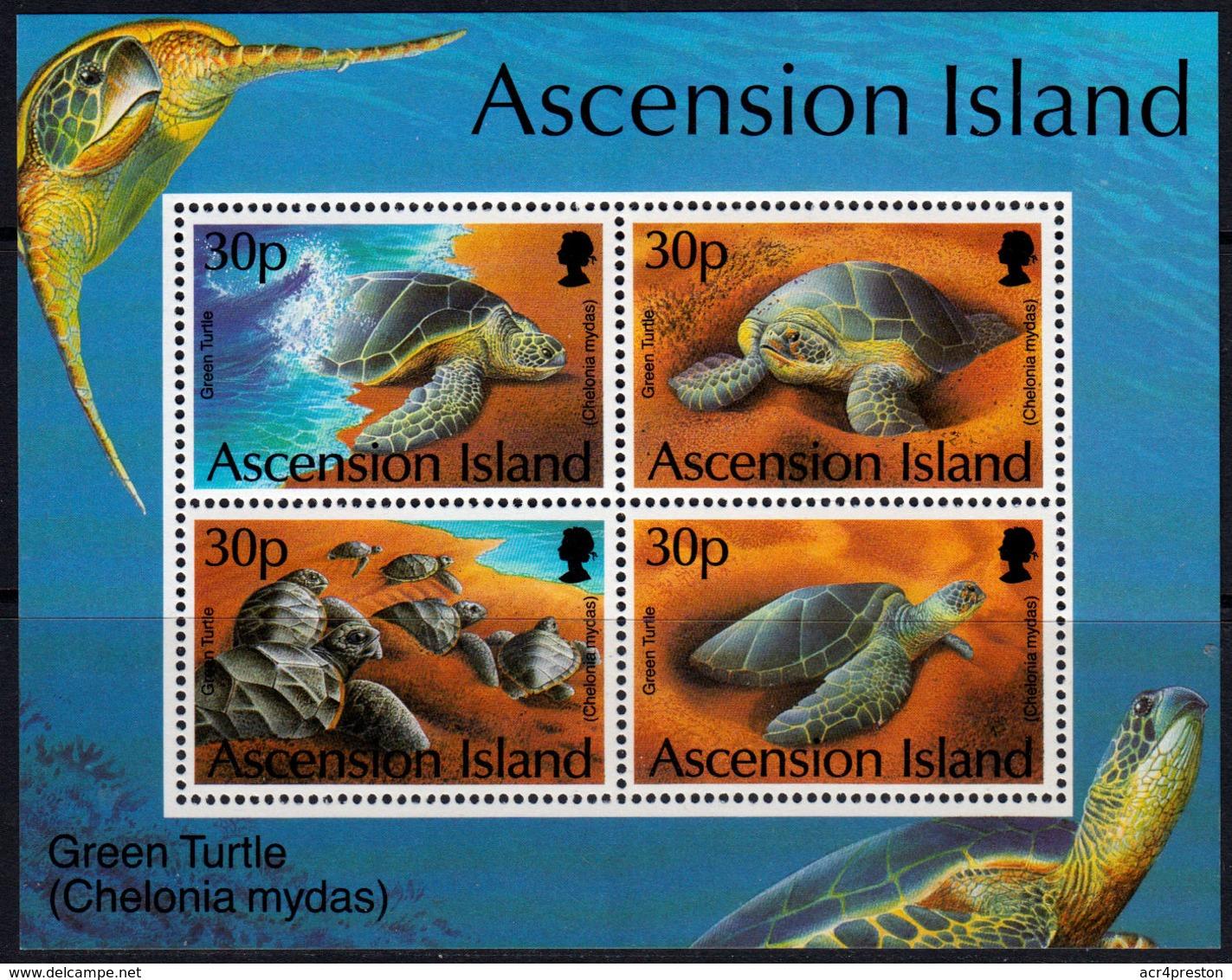 C0259 ASCENSION 2000, SG MS794  Turtle Project,  MNH - Ascension (Ile De L')