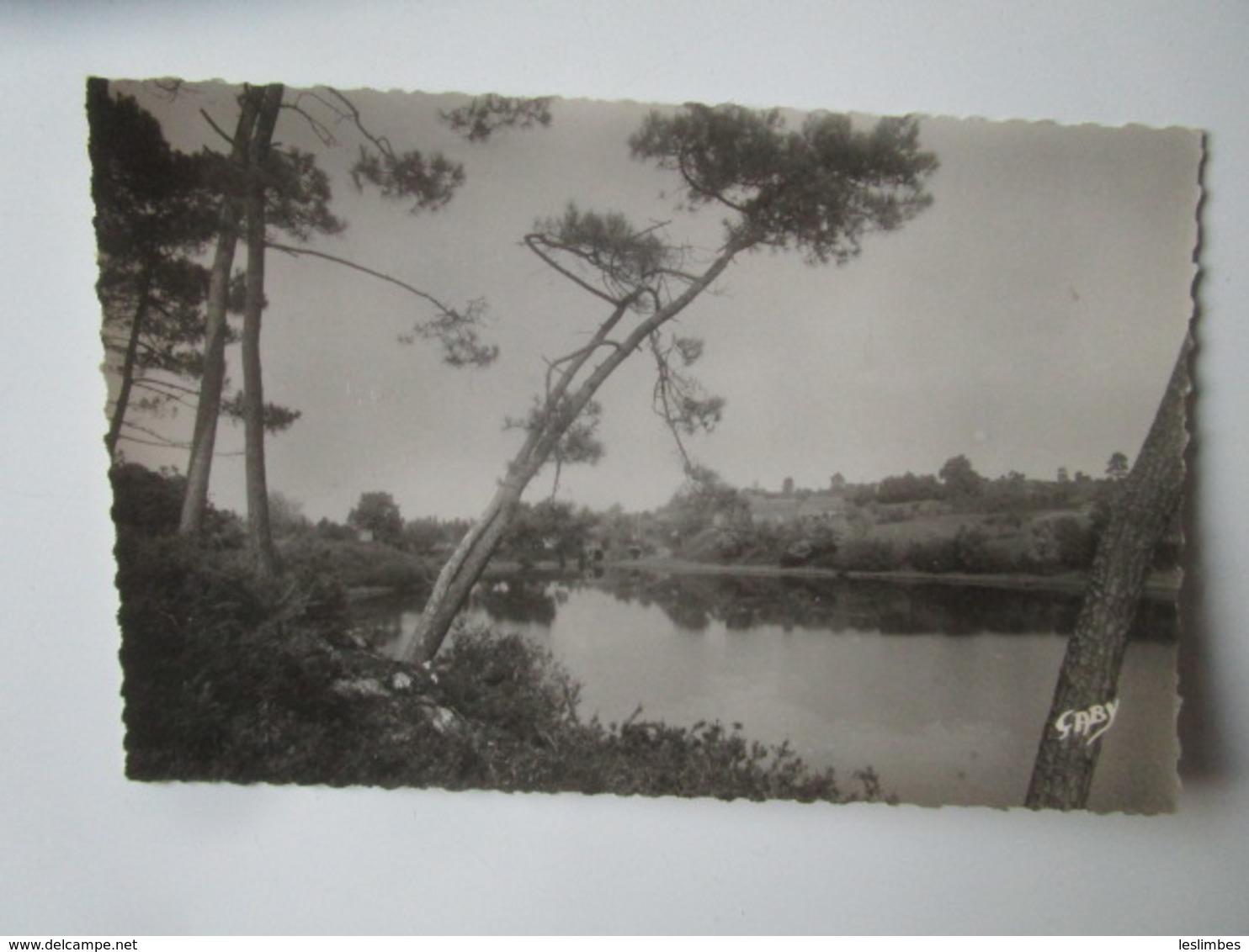 Moisdon La Riviere. Etang De La Forge. Gaby 8 - Moisdon La Riviere