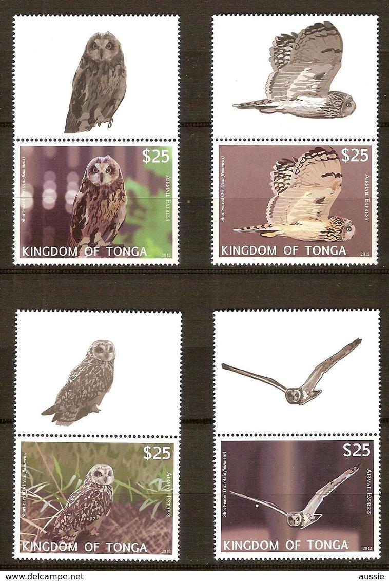 Tonga  2012 Yvertn° PA LP 303-306 *** MNH Cote 125 Euro Faune Oiseaux Vogels Birds Hiboux Uilen Owls - Tonga (1970-...)