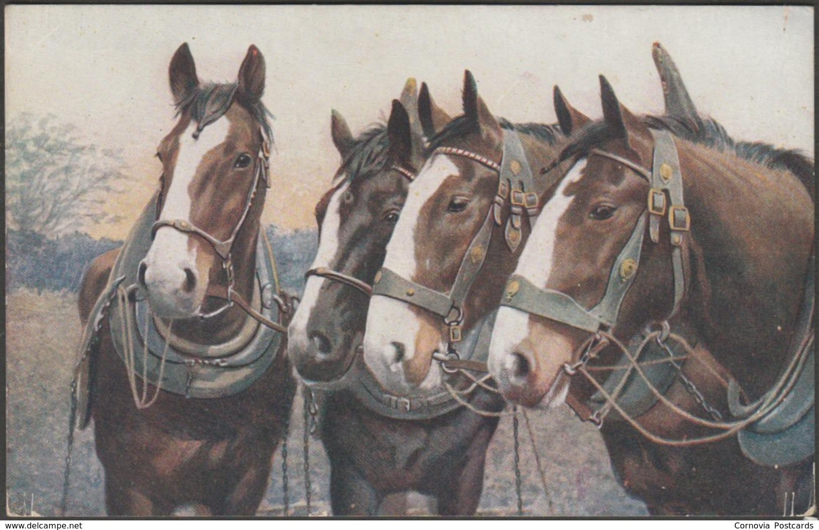 A Quartet Of Dray Horses, C.1920 - Salmon Postcard - Horses