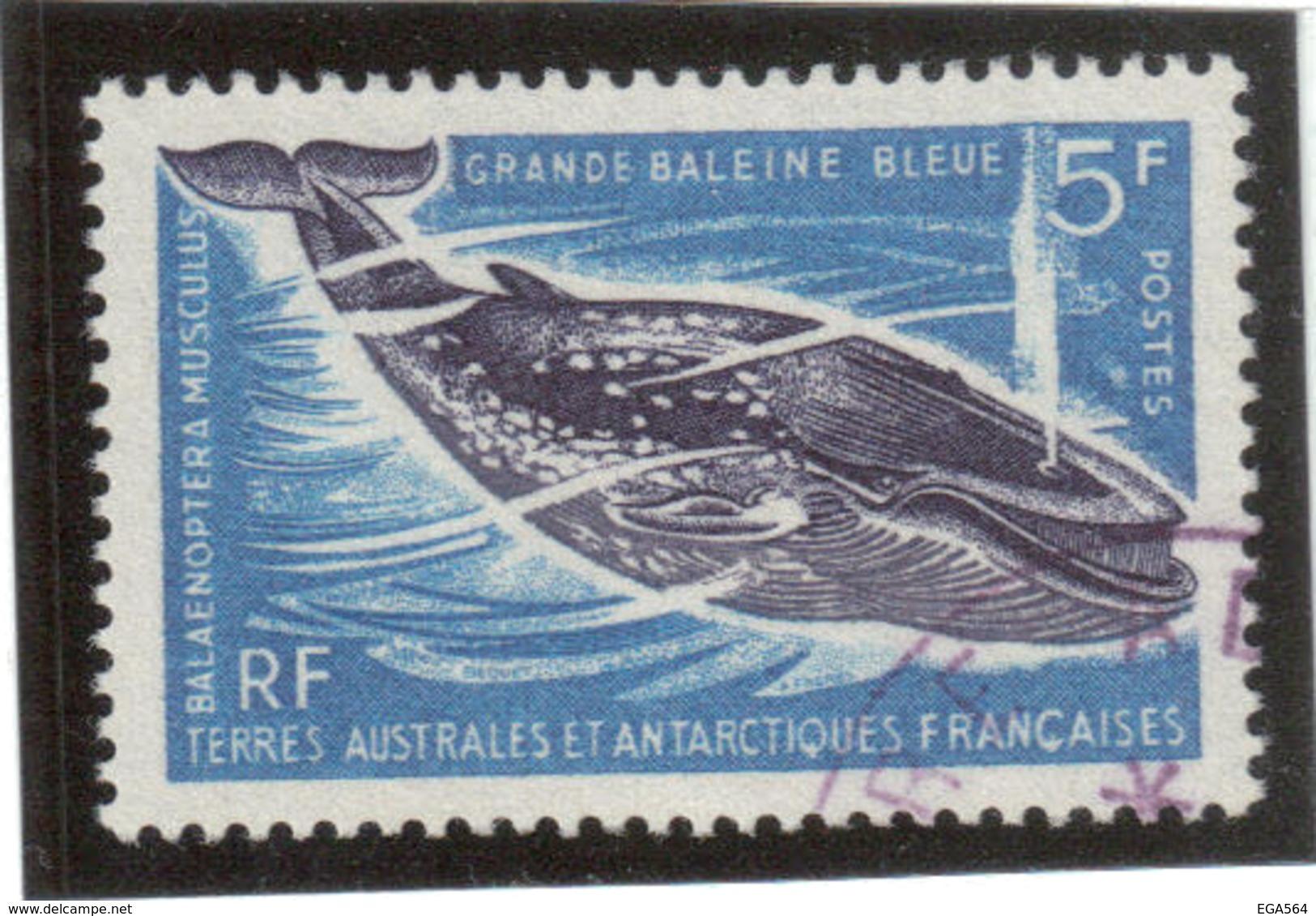 B1 - TAAF PO22 Oblitéré De 1966 - Grande Baleine Bleue - - Terres Australes Et Antarctiques Françaises (TAAF)