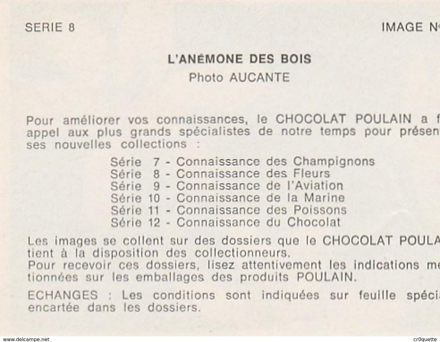 CHOCOLAT POULAIN - LOT DE 10 IMAGES SERIE 8 CONNAISSANCE DES FLEURS - Old Paper