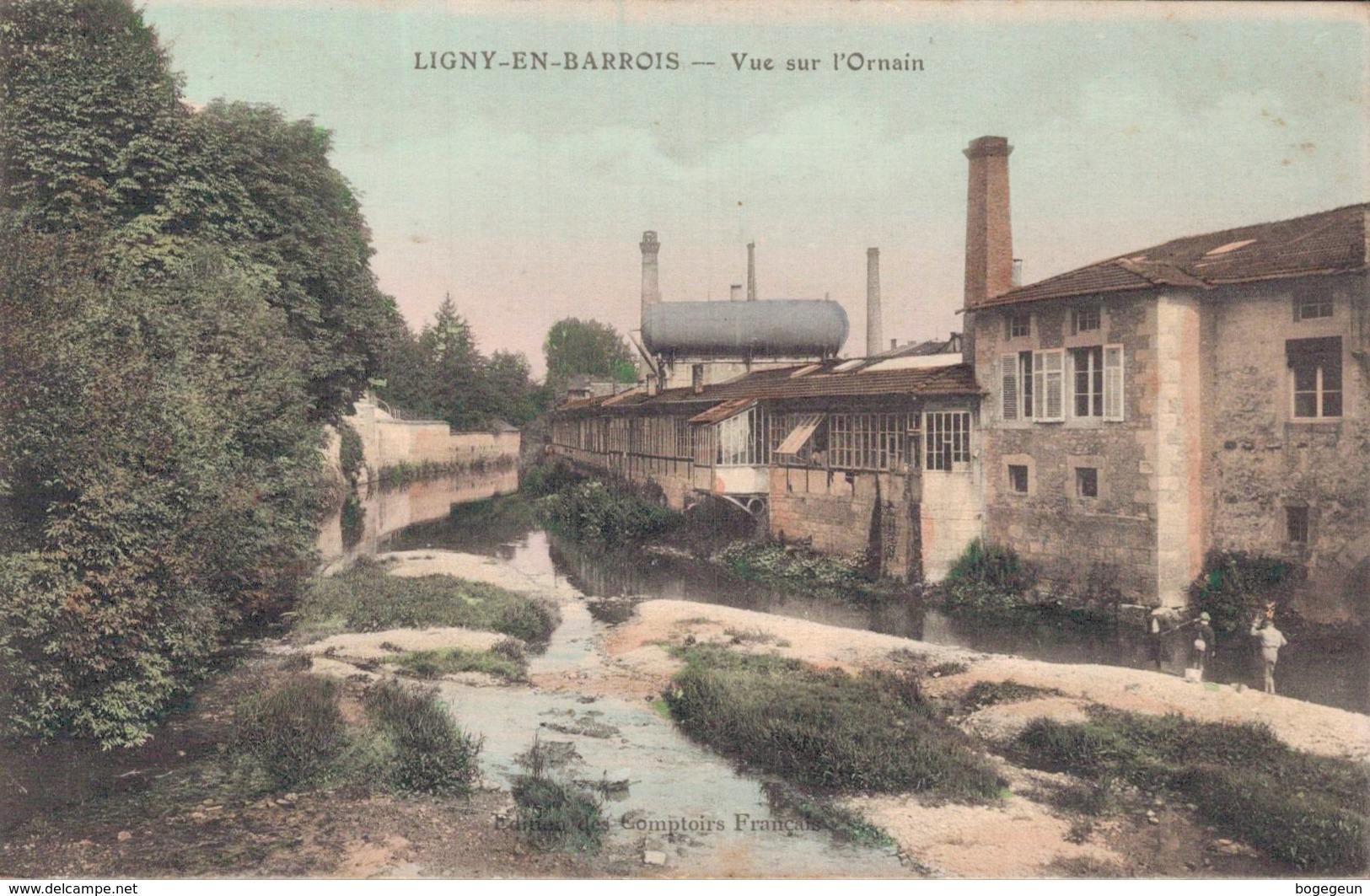 55 LIGNY EN BARROIS Vue Sur L'ornain - Ligny En Barrois