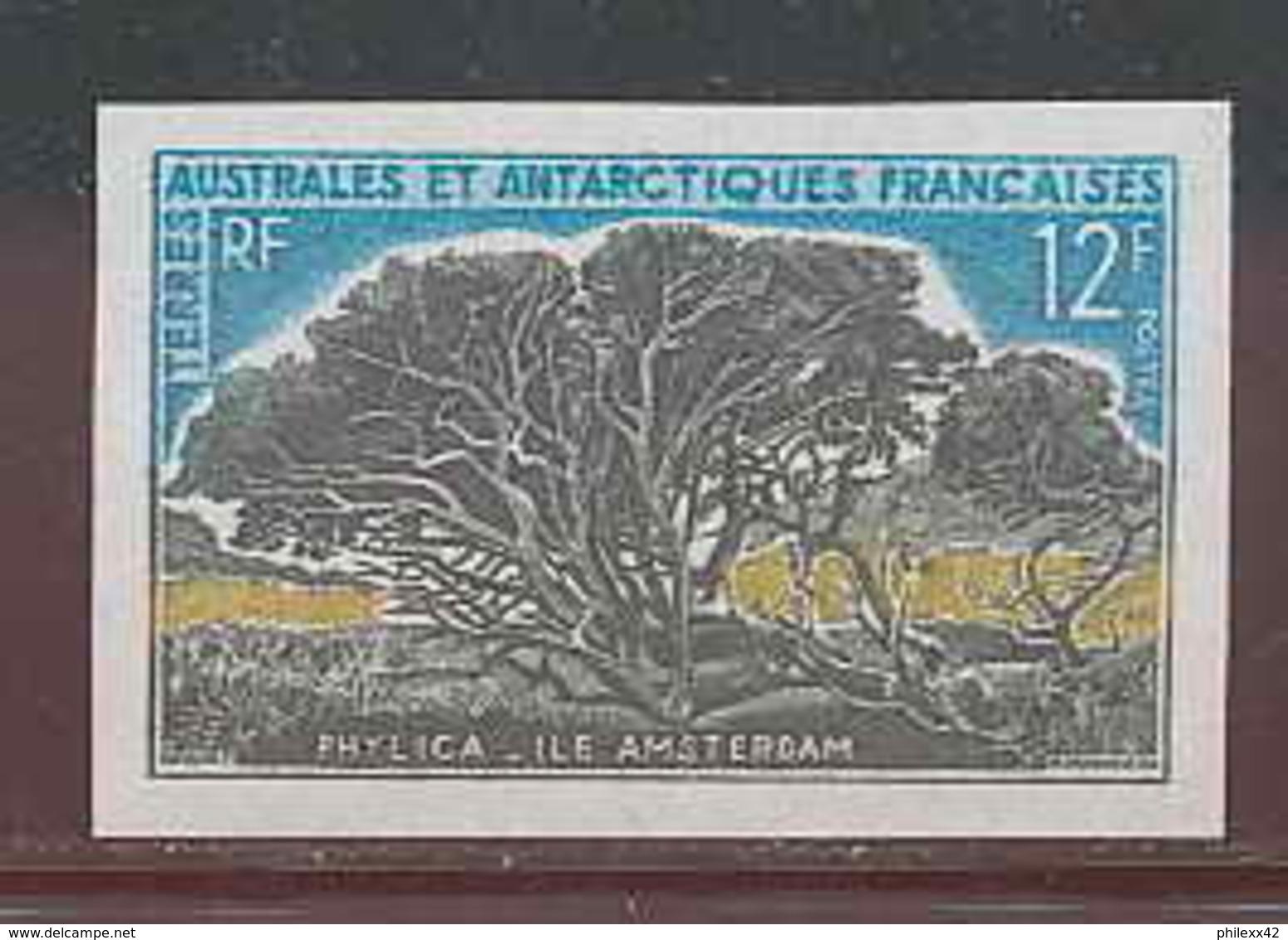 2510 Terres Australes Taaf - N°29 Phylica De L'ile Amsterdam Non Dentelé (imperforate) ** MNH - Non Dentelés, épreuves & Variétés