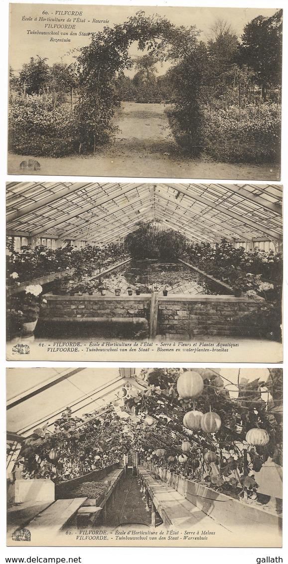 VILVORDE-18 Cartes Différentes De  L'Ecole D'Horticulture De L'Etat... - Vilvoorde