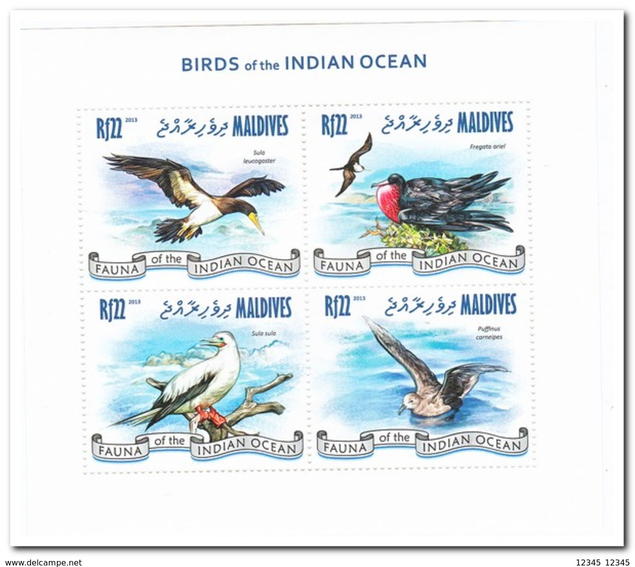 Maldiven 2013, Postfris MNH, Birds - Maldiven (1965-...)