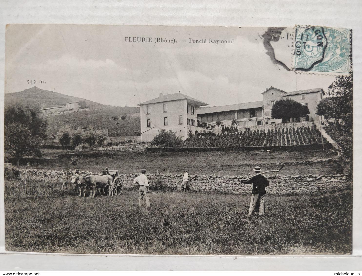 Fleurie. Poncié Raymond - France