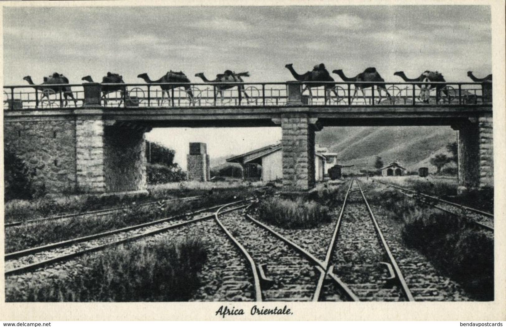 Italian East Africa, Bridge Over Railway Track, Station, Camels (1930s) Postcard - Cartoline