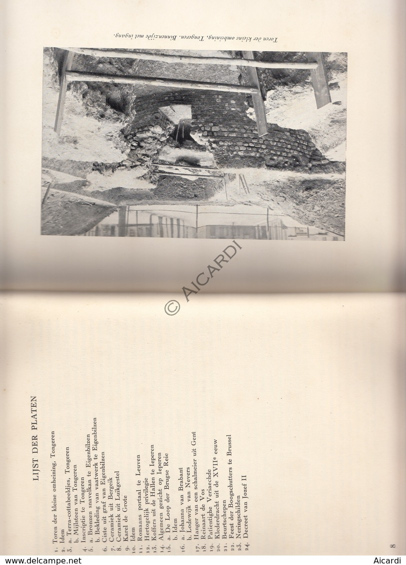 Boek Beelden Uit Ons Verleden 1950 (E2) - Boeken, Tijdschriften, Stripverhalen