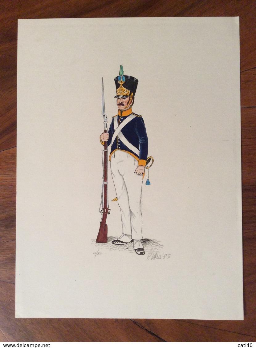UNIFORMI MILITARI FUCILIERE DELLA BRIGATA ALESSANDRIA  1817  (18x24)  Di R.VELA 85 - Uniforms