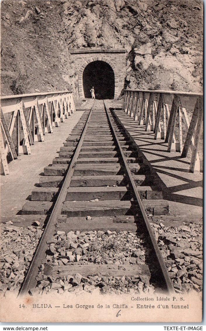 ALGERIE - BLIDA - Les Gorges De La Chiffa, Entrée D'un Tunnel. - Blida