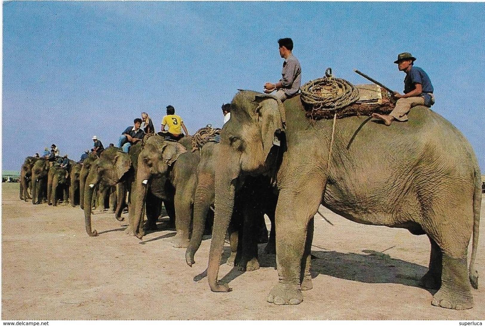 6-THAILAND-LOTTO 14 CARD VEDUTE DIVERSE-NON VIAGGIATE - Tailandia