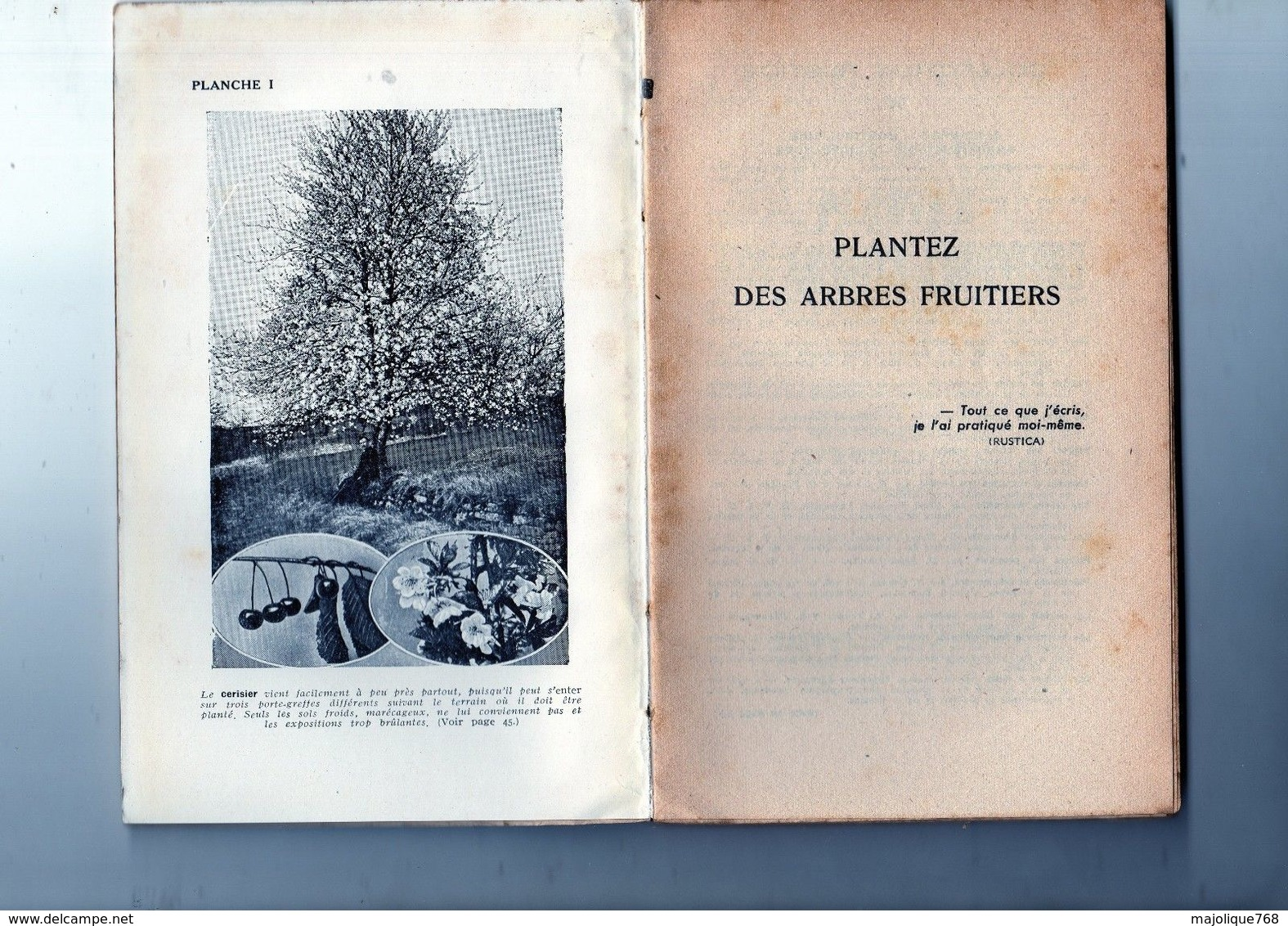 Livre Collection Rustica - Plantez Des Arbres Fruitiers-1951 éditions Montsouris Par Édouard Langevin - - Garden