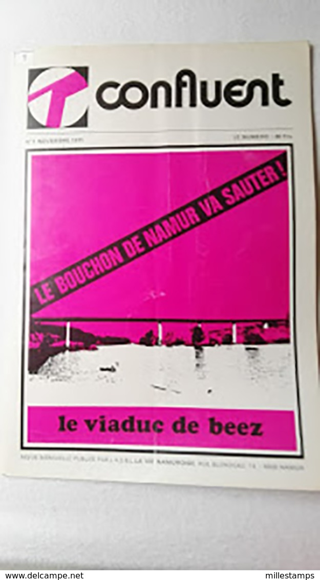 Lot De 555 Numéros (Depuis N° 1 - 1971 Au N° 555 - 2017] Du Bimensuel CONFLUENT Province Namur Belgique - Livres, BD, Revues