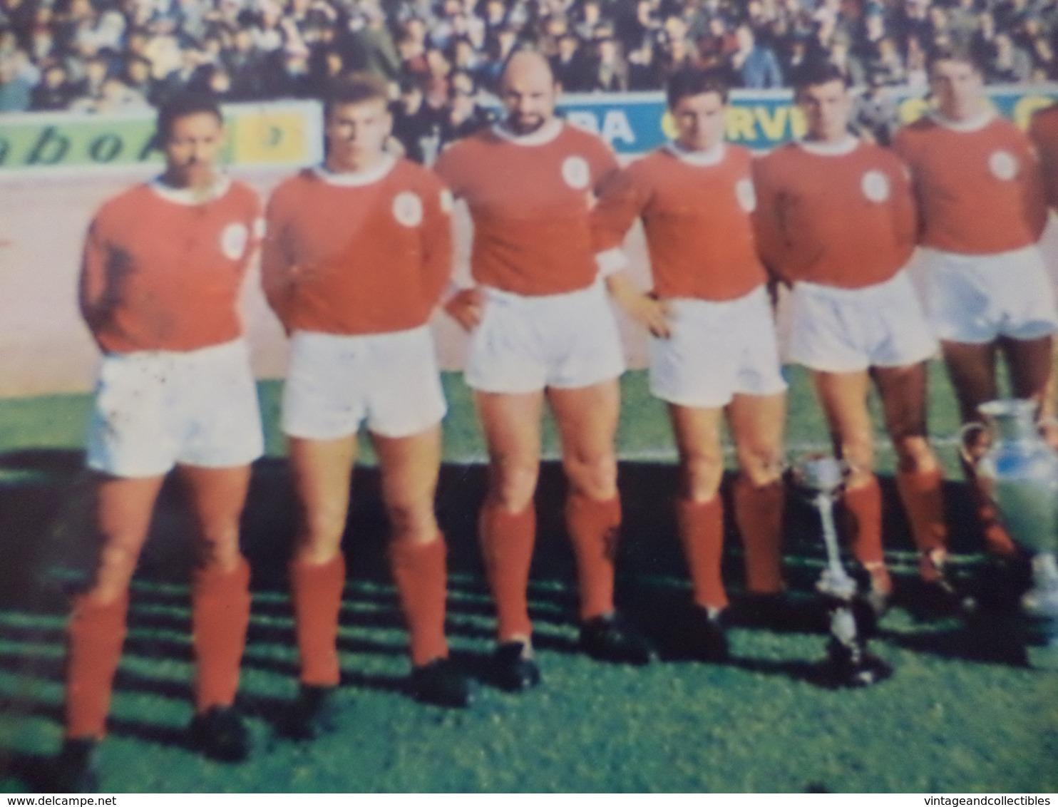 SPORT LISBOA E BENFICA - EQUIPA VENCEDORA DO CAMPEONATO NACIONAL E TAÇA DE PORTUGAL 1963/64 - FOTOGRAFIA ORIGINAL - Sport