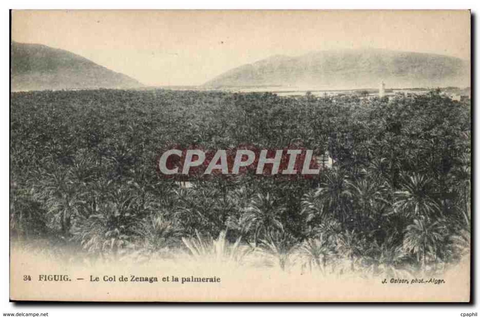 Algerie CPA Figuig Le Col De Zenaga Et La Palmeraie - Algeria
