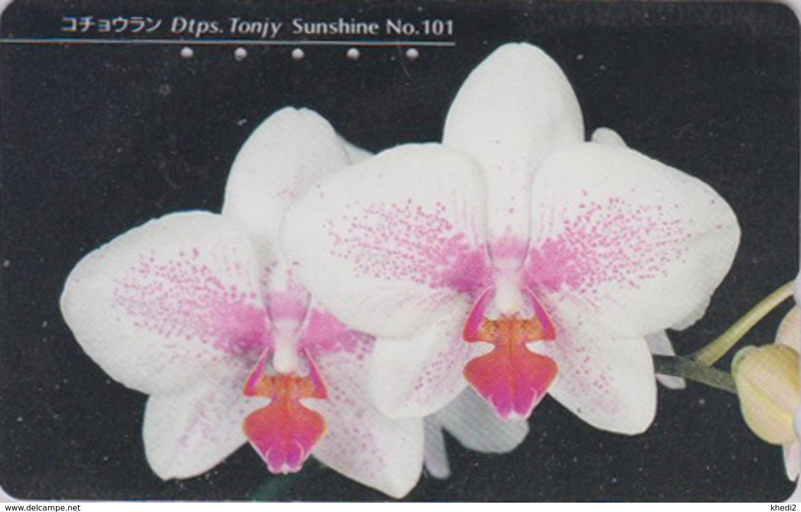 Télécarte Japon / 110-011 - Fleur - ORCHIDEE - ORCHID ** SUNSHINE ** - Flower Japan Phonecard - ORQUIDEA - 2424 - Fleurs