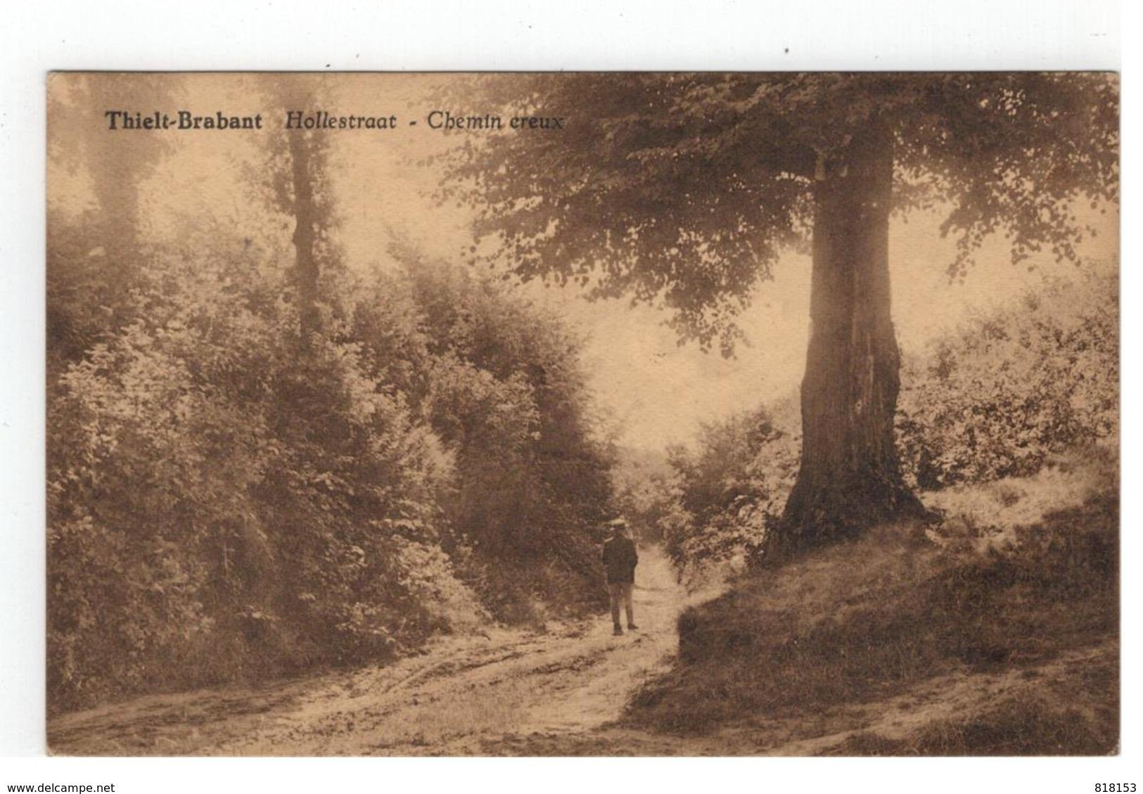Tielt-Winge  Thielt-Brabant  Hollestraat - Chemin Creux  Uitg. D. Torbeyns - Tielt-Winge