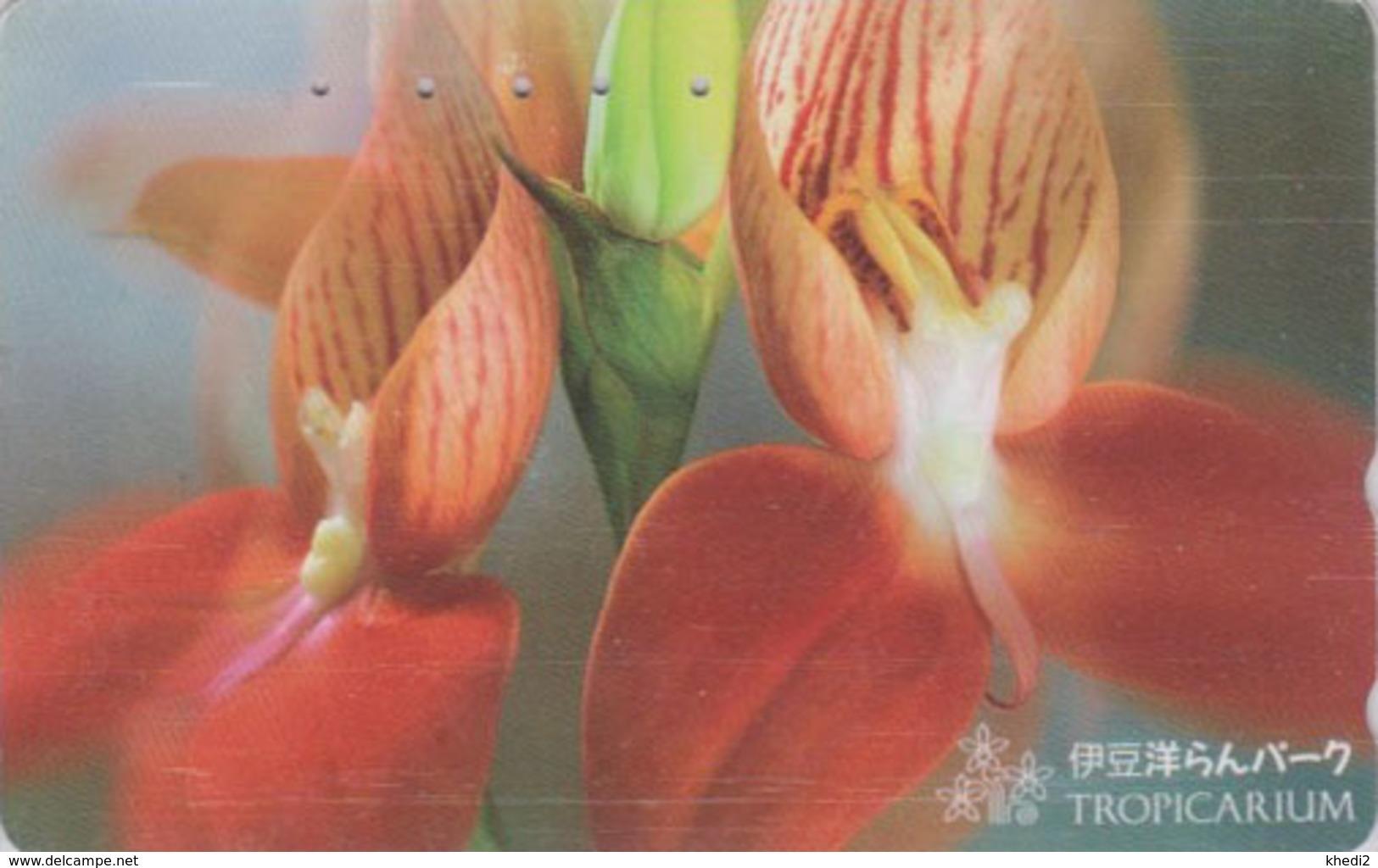 Télécarte Japon / 110-016 - FLEUR -  ORCHIDEE **  Série TROPICARIUM  IZU ORCHID PARK ** - FLOWER Japan Phonecard - 2433 - Fleurs