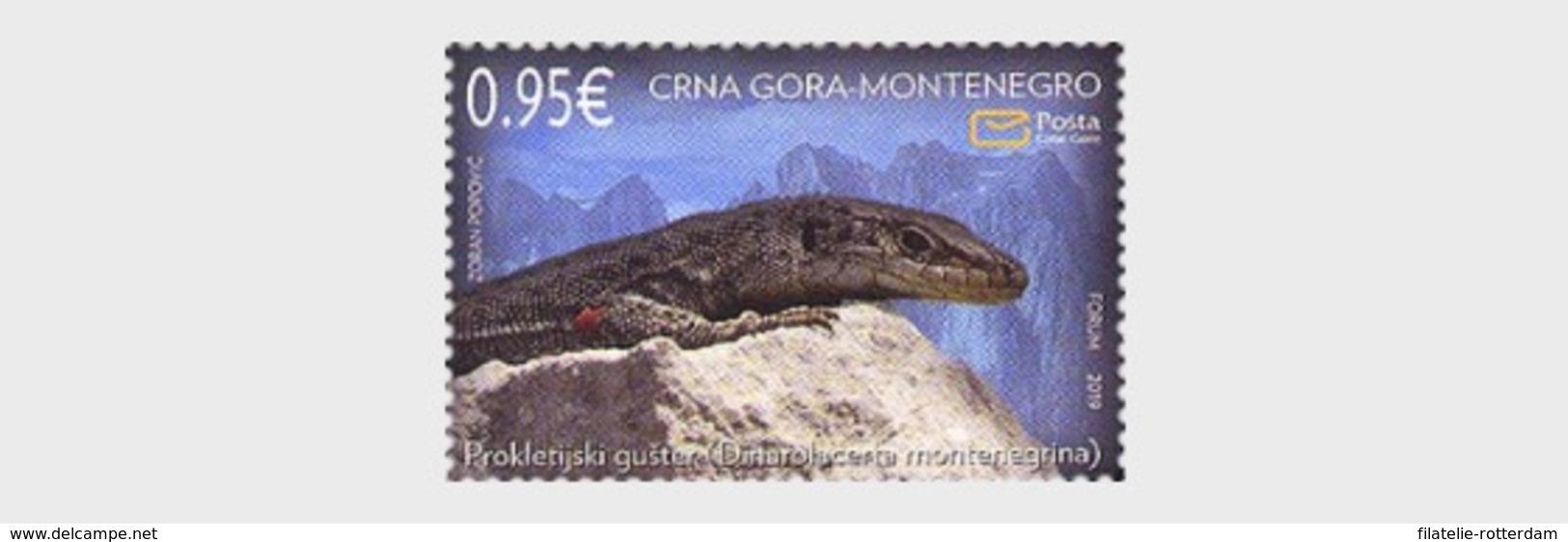 Montenegro - Postfris / MNH - Fauna 2019 - Montenegro