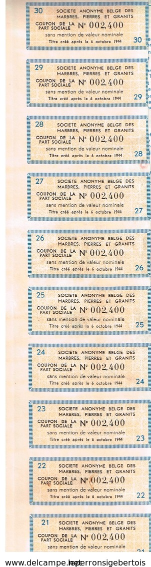 Action Ancienne - Sté Anonyme Belge Des Marbres Pierres Et Granits - Titre De 1959 N°002400 - Mines