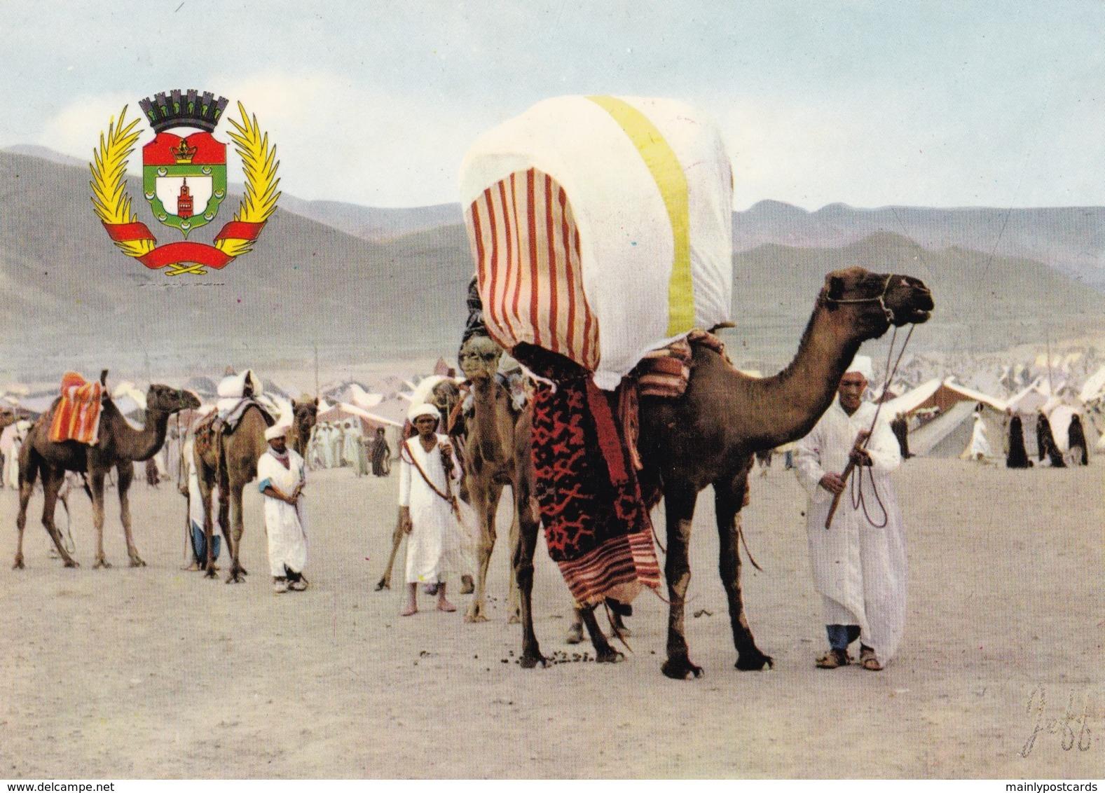 AN92 Moussem D'Imilchil, Un Mariage - Morocco