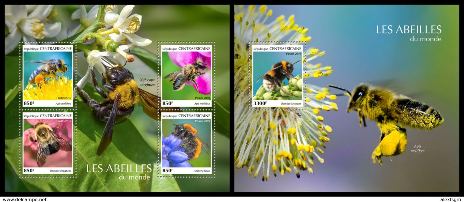 CENTRAL AFRICA 2019 - Bees, M/S + S/S Official Issue - Insecten