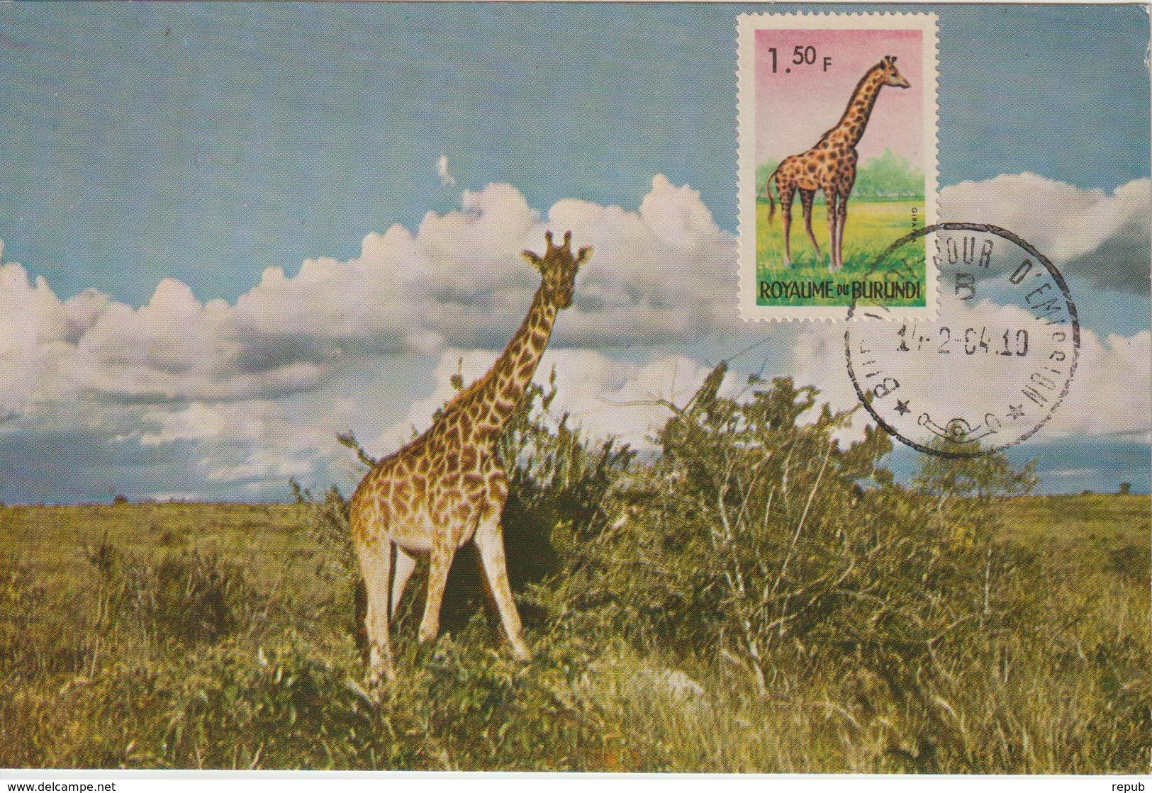 Burundi Carte Maximum Animaux 1964 Girafe 82 - Burundi