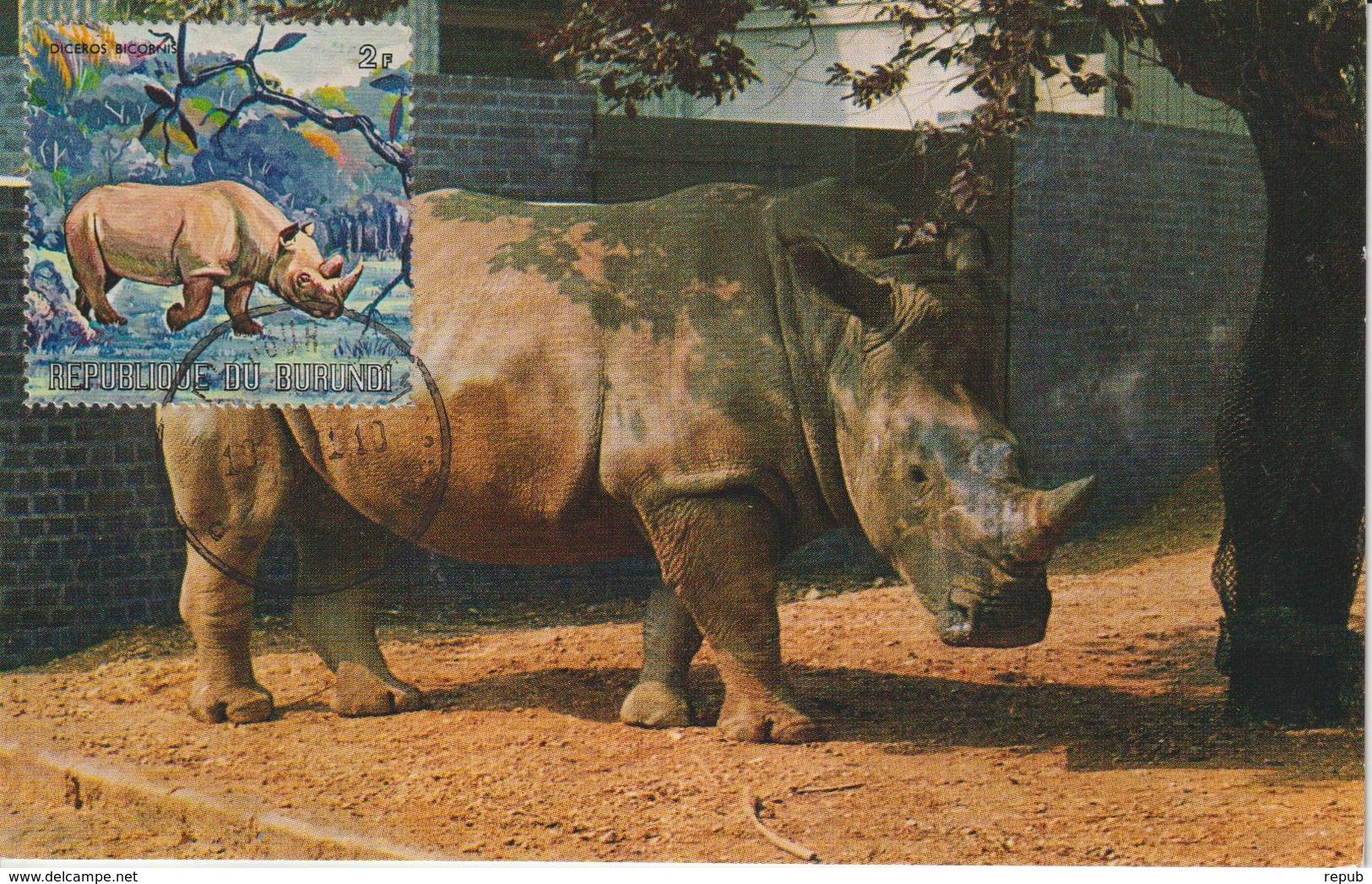 Burundi Carte Maximum Animaux 1971 Rhinocéros 439 - Autres