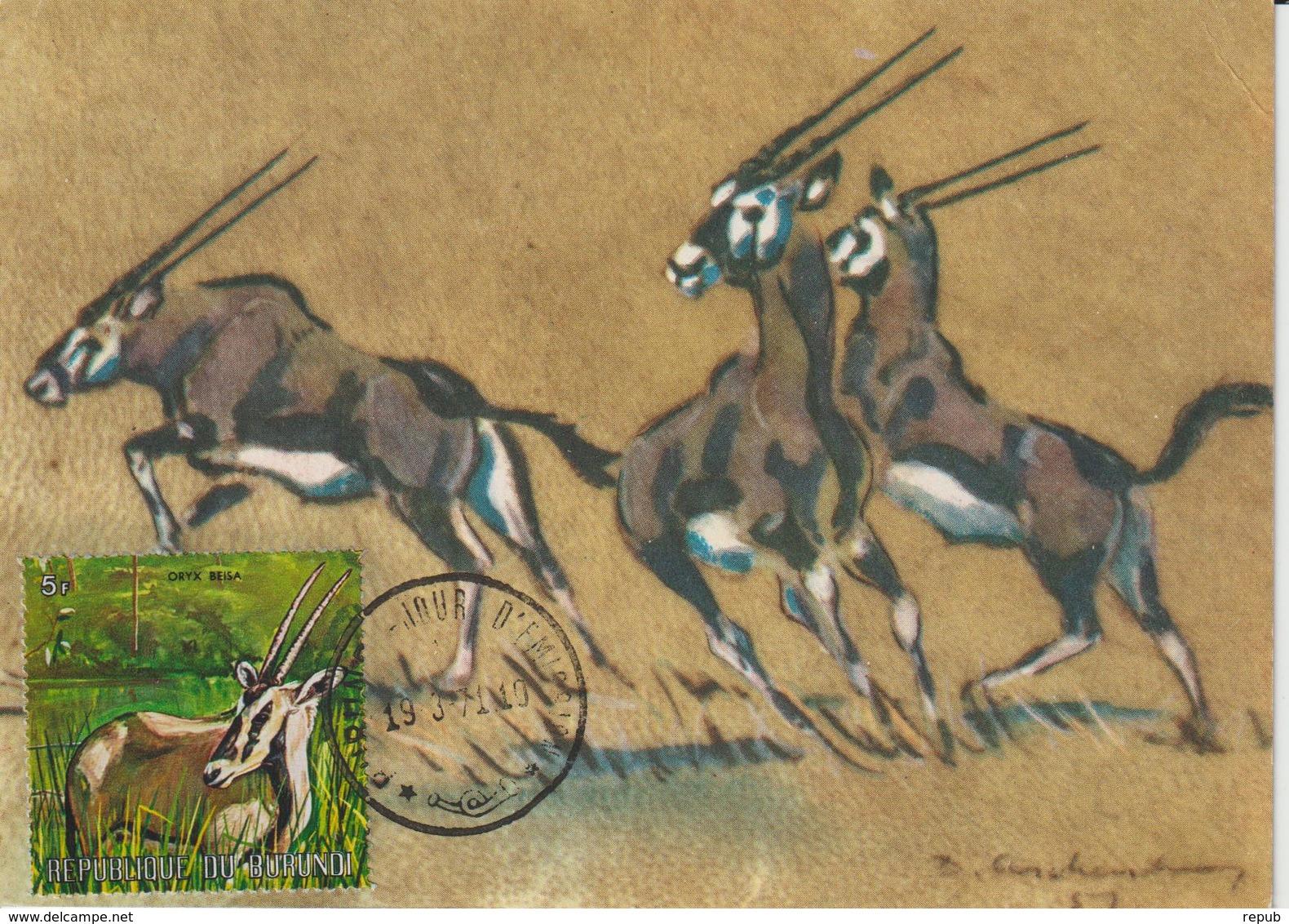 Burundi Carte Maximum Animaux 1971 Oryx 449 - Burundi