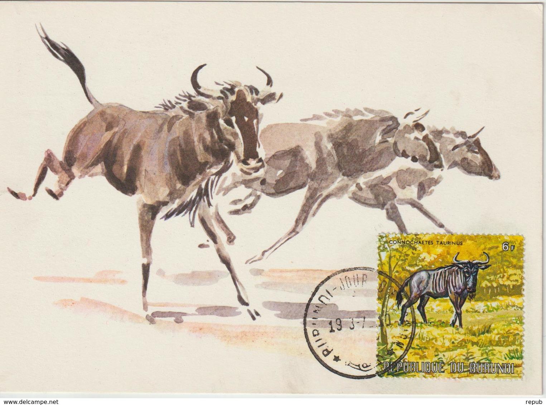Burundi Carte Maximum Animaux 1971 Gnou 451 - Autres