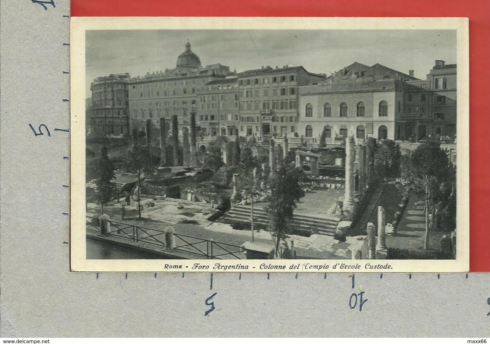 CARTOLINA NV ITALIA - ROMA - Foro Argentina - Colonne Del Tempio D'Ercole Custode - 9 X 14 - Roma