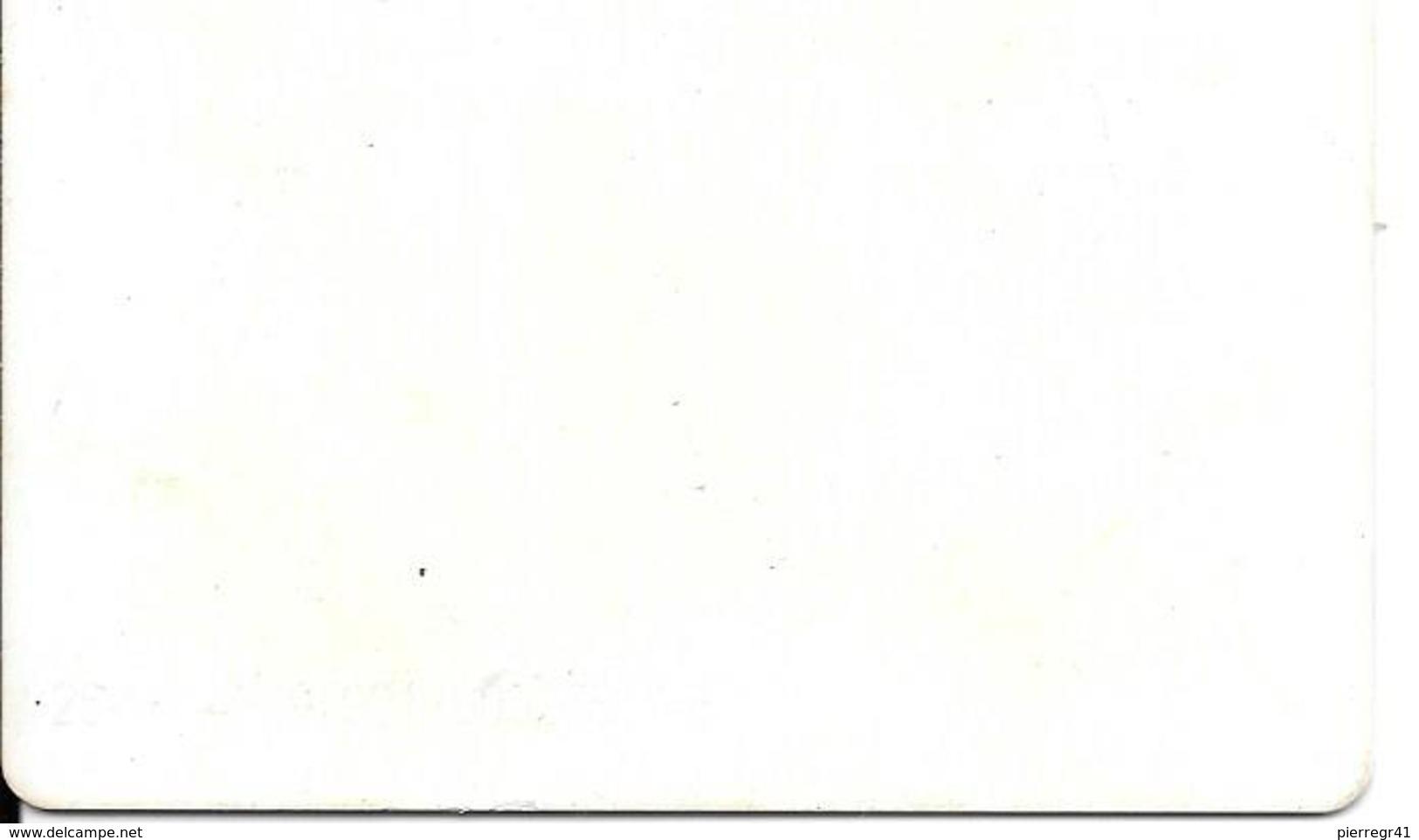 TICKET--2000-ALTISERVICE-ST LARY-TBE-Plastic Epais- - Tickets D'entrée