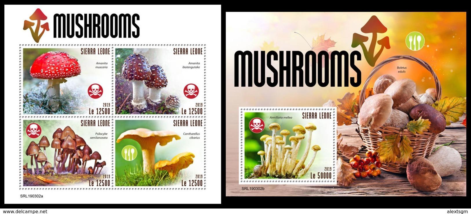 SIERRA LEONE 2019 - Mushrooms. M/S + S/S Official Issue [SRL190302] - Sierra Leone (1961-...)