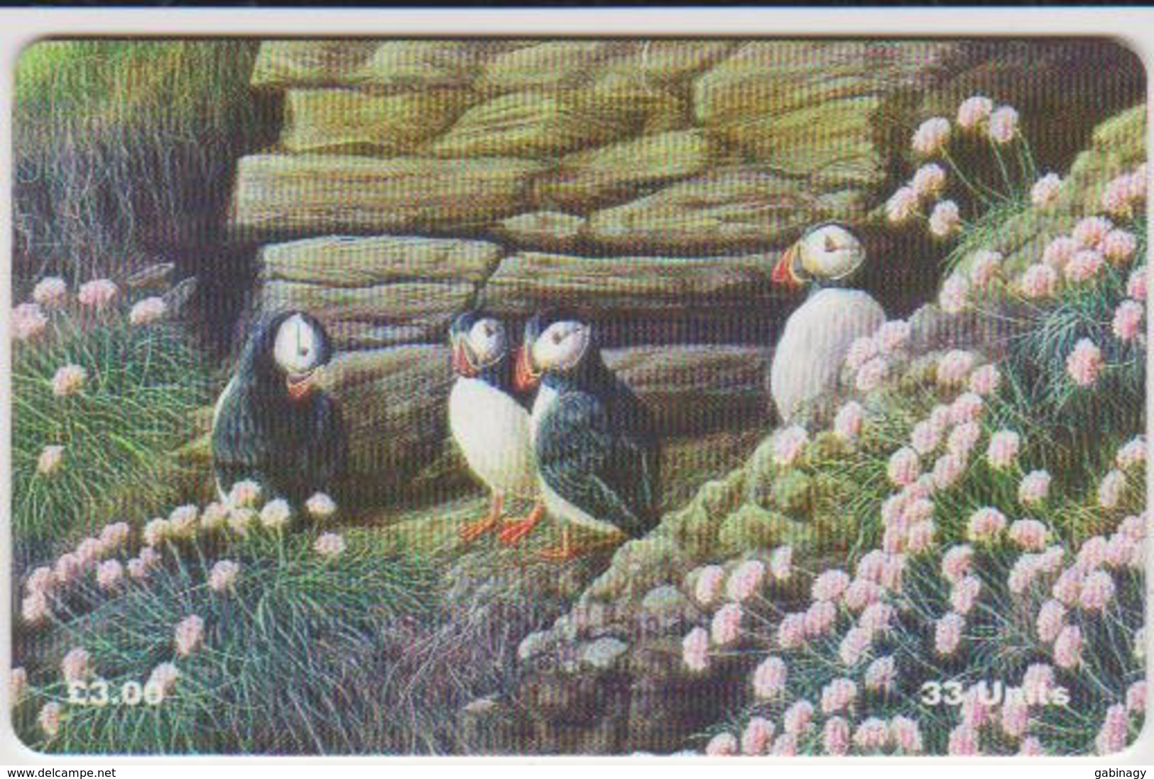 #08 - ISLE OF MAN-28 - PUFFINS - Isla De Man
