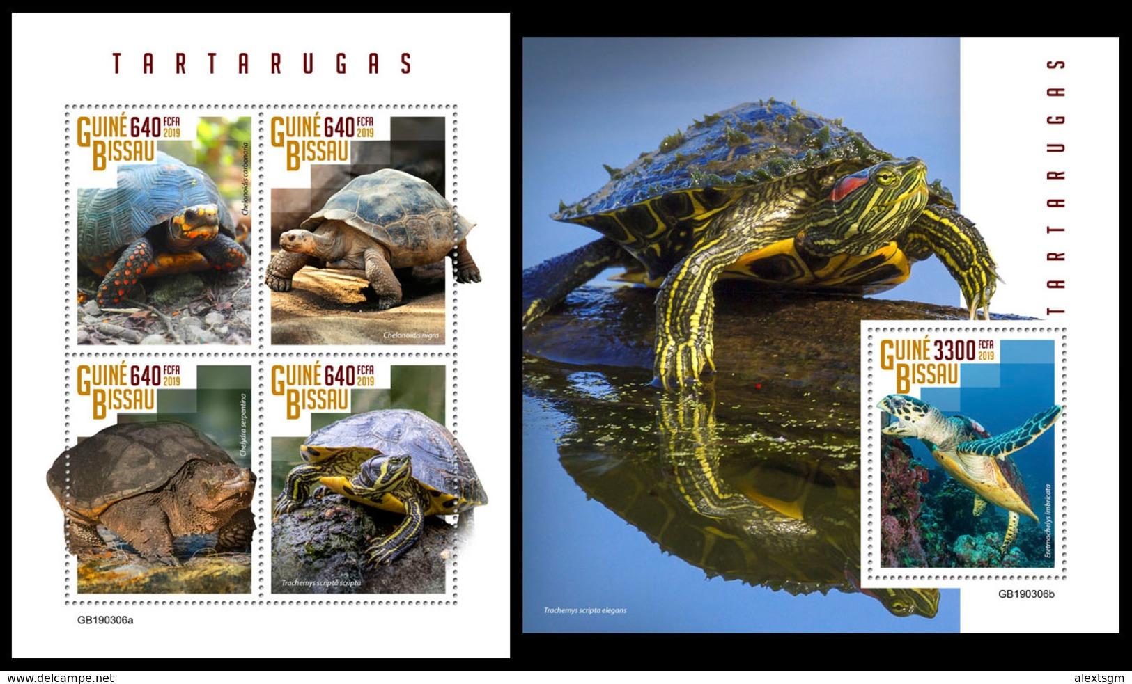GUINEA BISSAU 2019 - Turtles. M/S + S/S. Official Issue - Schildpadden