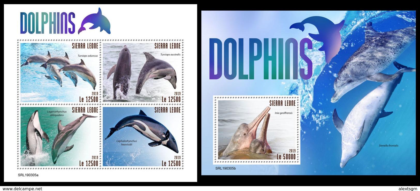 SIERRA LEONE 2019 - Dolphins. M/S + S/S Official Issue. - Dolfijnen
