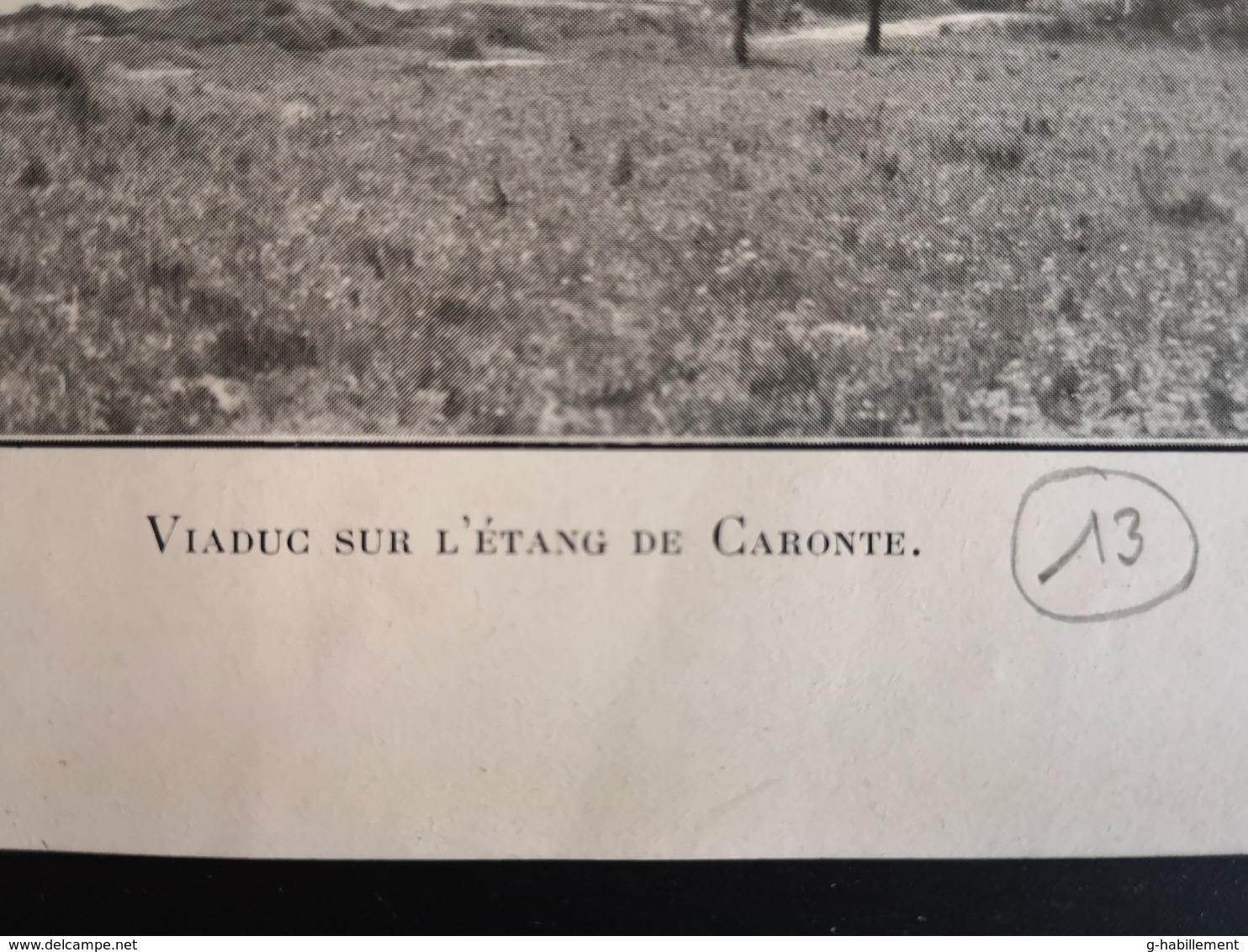 ANNALES DES PONTS Et CHAUSSEES (IDep 13) - Plan Du Viaduc De L'étang De Caronte - (CLF48) - Travaux Publics