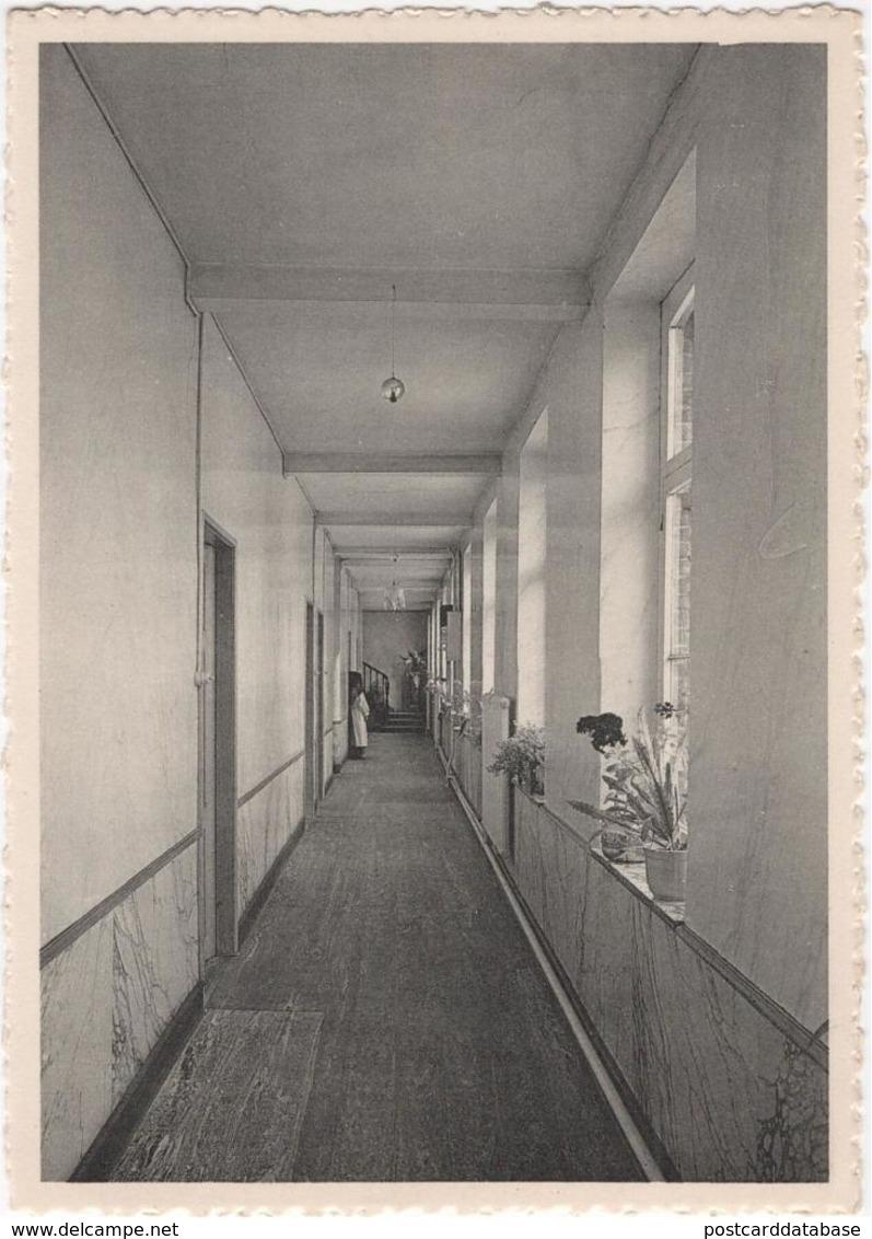 Velzeke - Ruddershove - Gesticht St Franciscus Grauwzusters Penitenten - Zaalgang OLV Van Lourdes - & Hospital - Zottegem