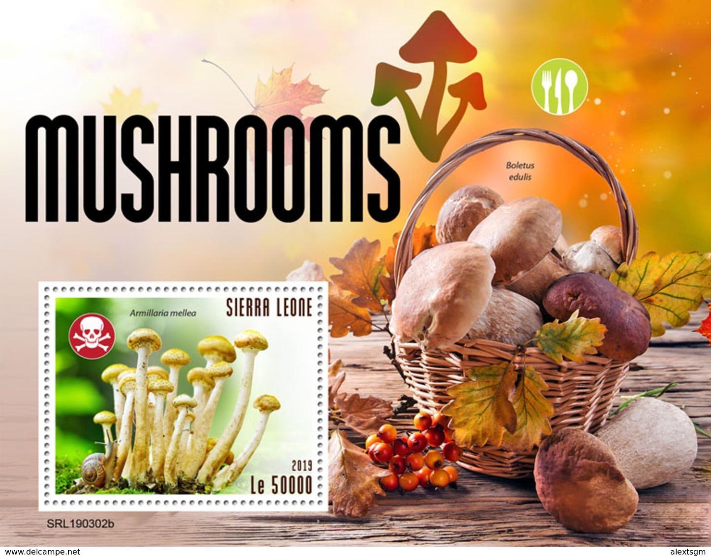 SIERRA LEONE 2019 - Mushrooms, Snail S/S. Official Issue. - Schelpen