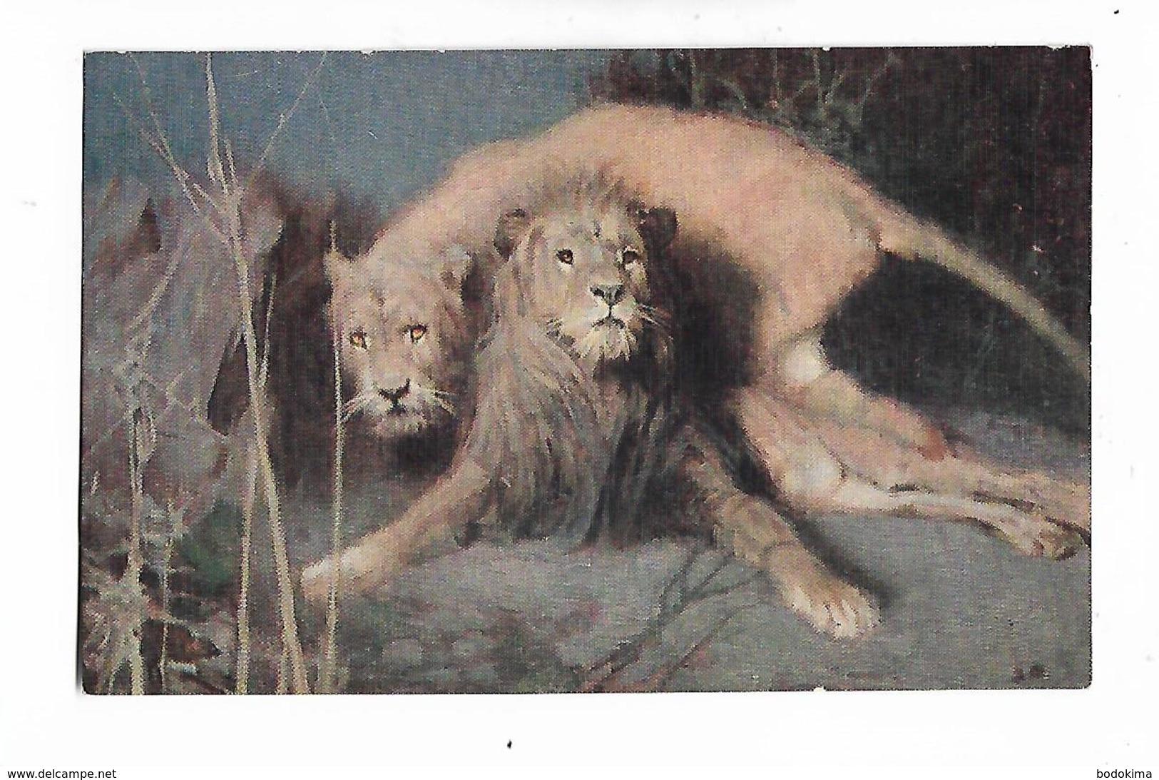 """Illustrateur  -  Tadé Styka    -   """" Les  Lions  (  Effet  De  Nuit  )  """" - Lions"""