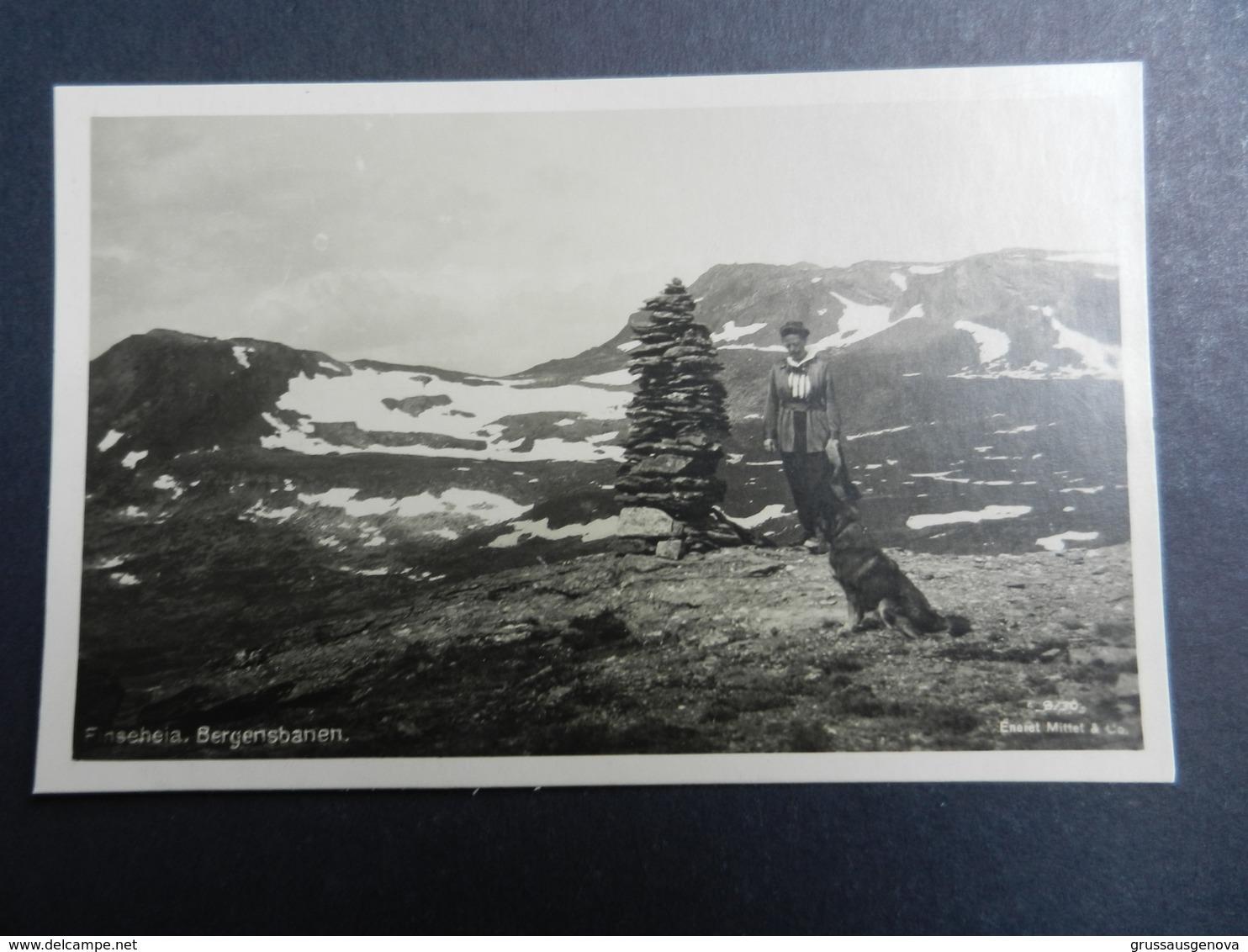 19924) NORGE FINSEHEIA BERGENSBANEN NON VIAGGIATA - Norvegia