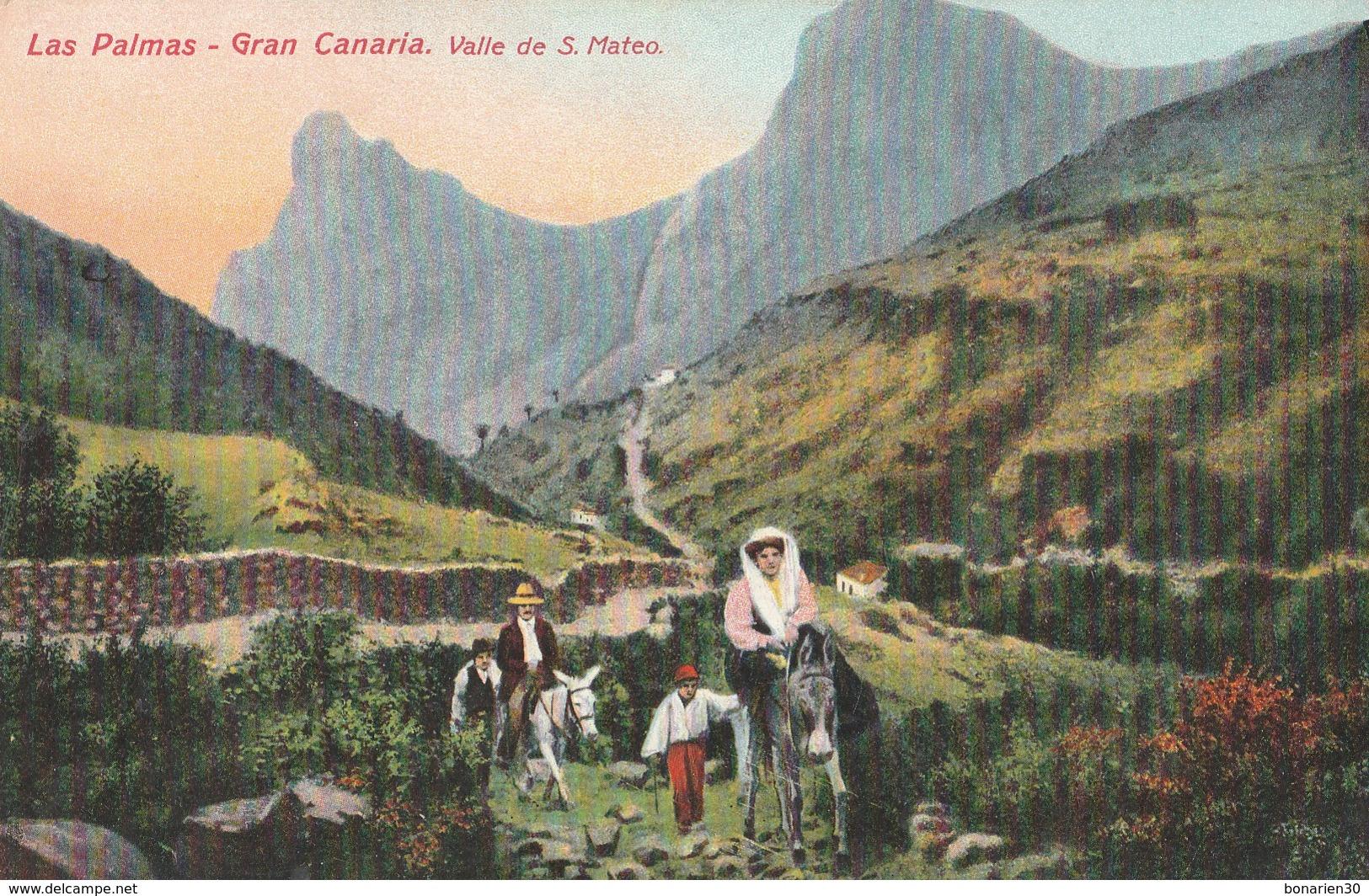 CPA  ESPAGNE  LAS PALMAS GRAN CANARIA VALLE DE S. MATEO - La Palma