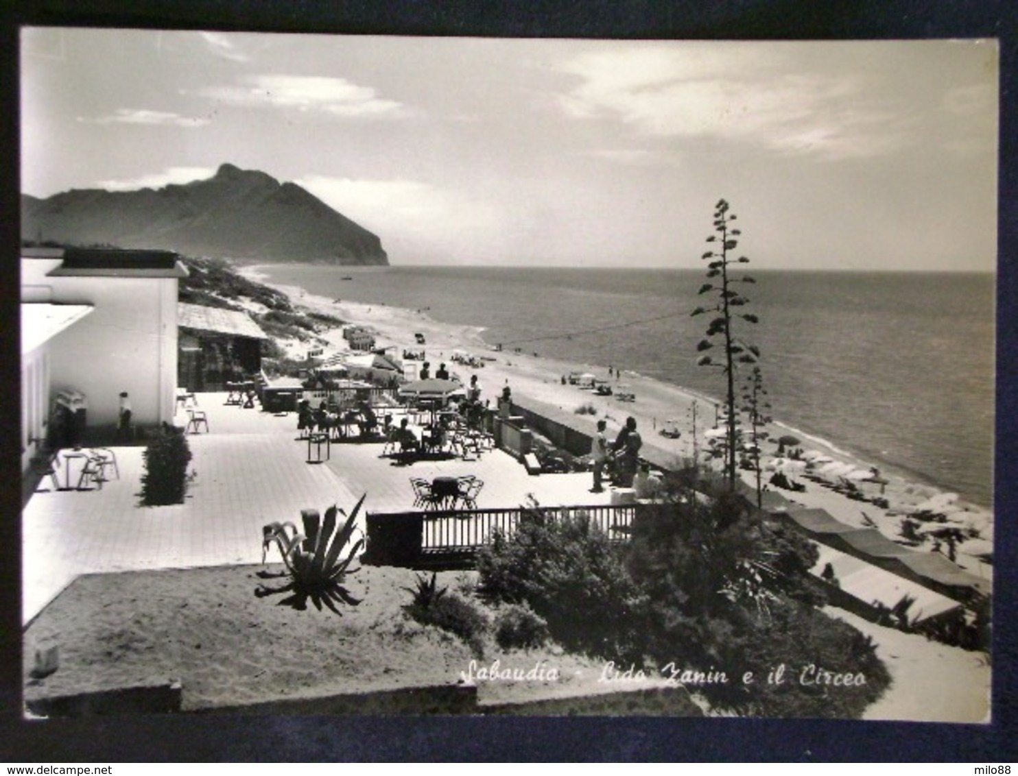 LAZIO -LATINA -SABAUDIA -F.G. LOTTO N°154 - Latina